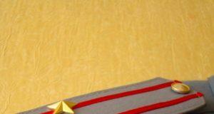 Две звезды на погонах: какое звание у МВД, военных, МЧС и полиции